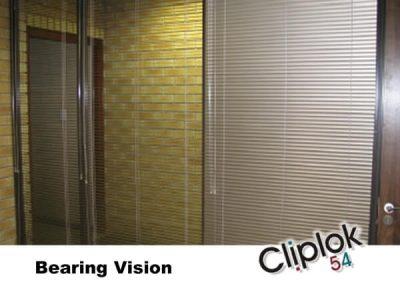Bearing Vision